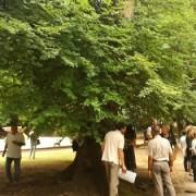 parco villa margherita manfrin